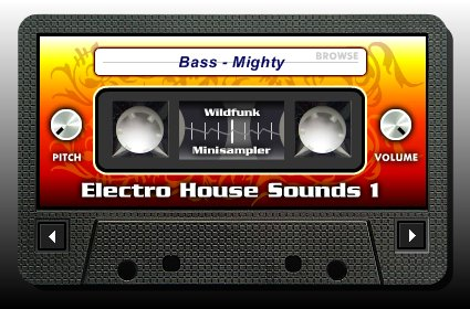 Wildfunk - Electro House Sounds 1
